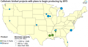 Initial commercial scale facilities are expected to produce between 10 and 30 million gallons of biofuel. As yields improve and producers take advantage of economies of scale, this could grow to 50 or 100 million gallons. Source: EIA
