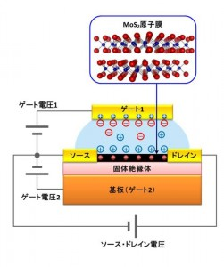 Device structure used in the study. MoSsub>2 nano-sheet showed superior transistor performance. A twin gate structure allowed fine tuning of superconductivity. © Iwasa Laboratory