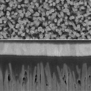 Scanning Electron Microscope images show an array of zinc-oxide nanowires (top) and a cross-section of a photovoltaic cell made from the nano wires, interspersed with quantum dots made of lead sulfide (dark areas). A layer of gold at the top (light band) and a layer of indium-tin-oxide at the bottom (lighter area) form the two electrodes of the solar cell.  Images courtesy of Jean et al./Advanced Materials