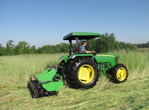 """A specialized """"roller/crimper"""" that Alabama growers can use to terminate cover crops can reduce and sometimes eliminate the need for herbicides with the subsequent corn."""
