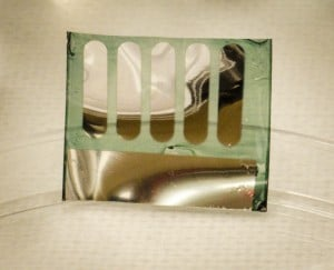 Solar Cell Made from Trees