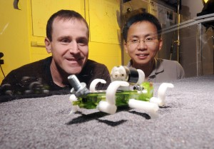 Georgia Tech professor Daniel Goldman and postdoctoral fellow Chen Li watch a robot traverse a track bed of poppy seeds as part of a study into how animals and robots move on granular surfaces. (Georgia Tech Photo: Gary Meek)