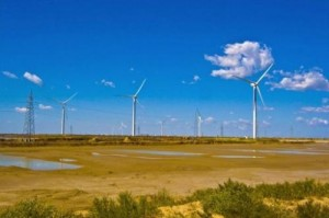 Wind turbines dot the landscape on the outskirts of Dongying, in central China's Shandong province on December 10, 2009. China and Japan stepped up spending last year in renewable energy but overall global investment declined due to economic and policy uncertainties in the West, a study said Wednesday.