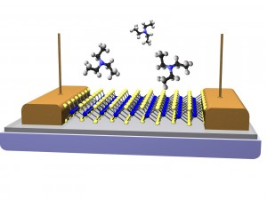 This is a schematic of a vapor sensor fabricated from a single monolayer of MoS2. The conductivity of the MoS2 channel changes as specific types of vapor molecules briefly interact with the surface. Molecules of triethylamine are shown a chemical assoicated with V-series nerve gas agents. (Photo: U.S. Naval Research Laboratory)