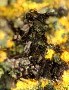 This extreme closeup color photograph of nashite crystals barely hints at their bluish-green color. The yellow material around the nashite is another mineral, lasalite. Joe Marty, a Salt Lake City mineral collector, discovered the new mineral in old uranium mines in Colorado and Utah and named it in honor of University of Utah geology and geophysics Professor Barbara Nash, who has studied several related vanadium minerals, called cavanadates. Photo Credit: Joe Marty