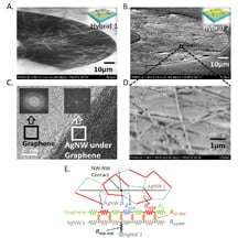 "Electron microscope images show a new material for transparent electrodes that might find uses in solar cells, flexible displays for computers and consumer electronics, and future ""optoelectronic"" circuits for sensors and information processing. The electrodes are made of silver nanowires covered with a material called graphene. At bottom is a model depicting the ""co-percolating"" network of graphene and silver nanowires. (Purdue University image/Birck Nanotechnology Center)"