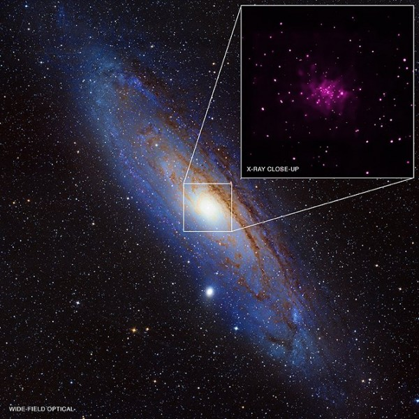 Data from NASA's Chandra X-ray Observatory have been used to discover 26 black hole candidates in the Milky Way's galactic neighbor, Andromeda, as described in our latest press release. This is the largest number of possible black holes found in a galaxy outside of our own.  A team of researchers, led by Robin Barnard of the Harvard-Smithsonian Center for Astrophysics, used 152 observations of Chandra spanning over 13 years to find the 26 new black hole candidates. Nine were known from earlier work. These black holes belong to the stellar-mass black hole category, which means they were created when a massive star collapsed and are about 5 to 10 times the mass of the Sun. (X-ray: NASA/CXC/SAO/R. Barnard, Z. Lee et al.; Optical: NOAO/AURA/NSF/REU Program/B. Schoening, V. Harvey and Descubre Foundation/CAHA/OAUV/DSA/V. Peris)