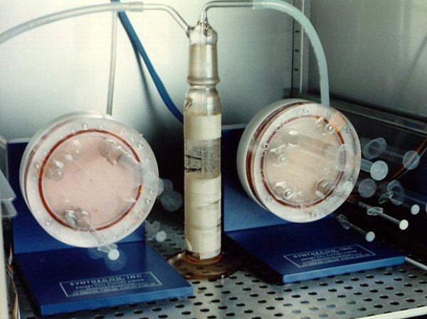 Time-lapse exposure of Bioreactor rotation. The bioreactor is a special incubator that gently spins to circulate cells' growth medium, while preventing turbulence that can harm the cells. (NASA/Dennis Olive)