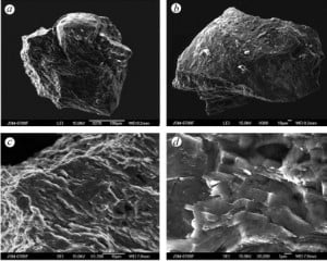 SEM images of the Tunguska diamond-lonsdaleite-graphite intergrowths with natural rounded surface. Credit: Planetary and Space Science, https://dx.doi.org/10.1016/j.pss.2013.05.003