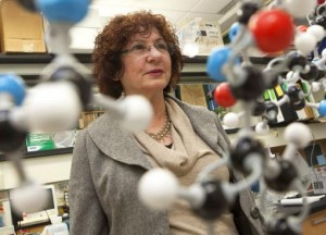"Edith Mathiowitz ""The distribution [of orally delivered protein-based medicines] in the body can be somehow controlled with the type of polymer that you use."" Credit: Mike Cohea/Brown University"