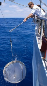 Giora Proskurowski deploys a net to collect samples that help estimate how much plastic debris is in the ocean. Credit: Sea Education Association.