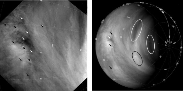 Tracking clouds on Venus