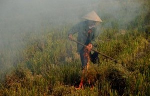 A Vietnamese farmer burns rice straw on her family's harvested rice field to prepare land for the next crop, outside Hanoi on June 14, 2013. The World Bank on Wednesday warned that severe hardships from global warming could be felt within a generation, with a new study detailing devastating impacts in Africa and Asia.