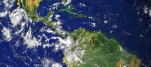 """The University of Chicago's David Jablonski is presenting new evidence that most evolutionary lineages started in the tropics and expanded outward in a process driven by what he and his colleagues call """"bridge species."""" Credit: NASA Visible Earth"""