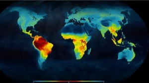This world map shows the combined species richness of amphibians, birds and mammals for the world as an overlay on a topographic map. Credit: Data from Clinton Jenkins, BirdLife, and IUCN. Illustration design by Félix Pharand-Deschênes (Globaïa).