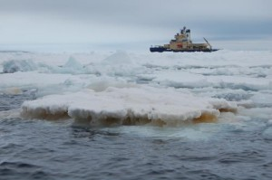 Georgia Tech Professor Ellery Ingall studied diatoms and their role in cycling iron in Antarctica. Colonies of diatoms living in the ice typically produce brown layers. Ingall collected samples while onboard the Swedish ship Oden (pictured). Credit: Ellery Ingall