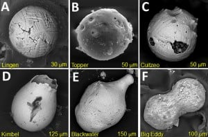 Examples of impact spherules collected from different sites. Credit: YDB Research Group