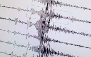 A monitor displays the seismological chart of the earthquake which hit Japan on March 11, 2011 at the Geozentrum geological science center in Hanover, central Germany. Massive earthquakes can cause distant volcanoes to sink, according to research in Japan and Chile published on Sunday.