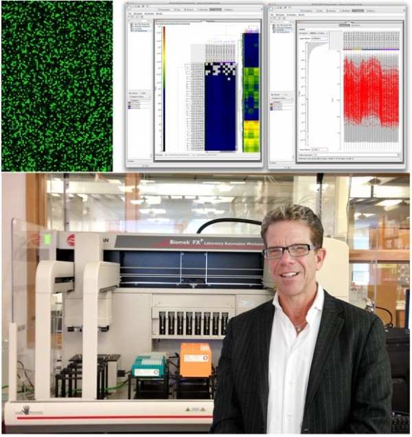 Virus expert Dr. Michael Katze (lower panel ) stands in front of the liquid handling robot that will process an estimated 4,000 samples per year for analysis by the functional genomics core laboratory. Processed samples are used to generate the expression levels of more than 20,000 genes, visualized in an array (panel upper left). With such array measurements on many samples, the Core will apply advanced statistical and mathematical techniques to understand the changes that occur during the course of vaccination and infection (panels upper center and right). Image credit: Robert Palermo and Sean Proll