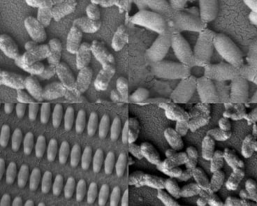 Researchers at MIT and the University of North Carolina created these coated nanoparticles in many shapes and sizes.  Image courtesy of researchers.