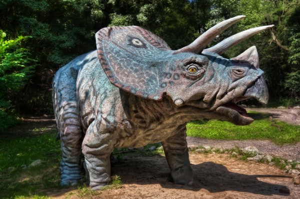 Debate continues over how dinosaurs did the deed. Credit: Credit Miroslav Petrasko (blog.hdrshooter.net)