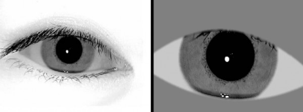 These iris images meet the biometric standard. The camera image on the left is run through commercial software to produce the image (right) that can be placed on the PIV card and for other uses such as an e-passport. Credit: NIST