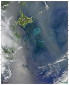 "This satellite image shows a large phytoplankton bloom, about 150 miles in diameter, that occurred in the Northwest Pacific Ocean off the coast of Hokkaido, Japan in May 2009. Researchers have assumed that such blooms were driven by iron in the post-Ice Age ocean, but a new study by WHOI scientists suggests that a ""perfect storm"" of light and nutrients spurred an explosion of phytoplankton and other tiny creatures in the North Pacific 14,000 years ago. (Photo by Norman Kuring, MODIS Ocean Color Team/NASA)"