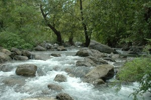 A stream in Monterrey, Mexico. RIOS was developed with partners in Latin America, where countries such as Mexico are experimenting with new conservation financing and water security mechanisms known as water funds that are designed to improve the reliability of clean water. Credit: The Nature Conservancy