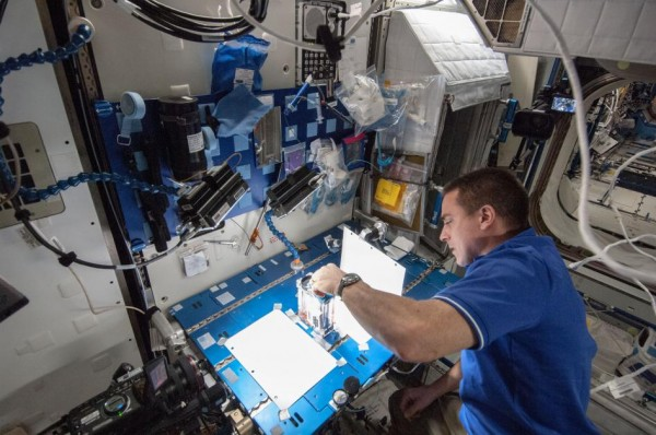 Expedition 36 flight engineer Chris Cassidy of NASA works on the Capillary Flow Experiment aboard the International Space Station on May 22. The Payload Operations Integration Center assists the crew with experiments like this from the ground. Image Credit: NASA