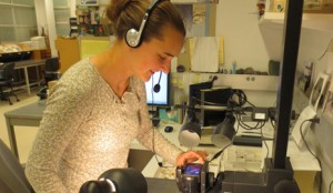 Using a process developed by the Yale Peabody Museum, Division of Invertebrate Paleontology museum assistant Jessica Utrup uses voice recognition software to expedite imaging of tens of thousands of fossils.