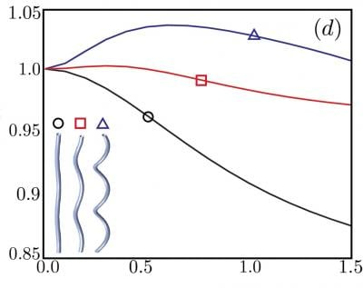 In the graph, the vertical axis is the ratio of speed in a viscoelastic fluid to speed in water. The horizontal axis is the degree of viscoelasticity. A flagellum with a high-angle helix, labeled with triangle, swims faster in a viscoelastic fluid than in water when the viscoelasticity is just right. As the helix angle decreases, the peak enhancement in speed decreases. For low-angle helices (circle), viscoelasticity always makes the swimmer slower than it would be in water. Credit: Powers lab/Brown University