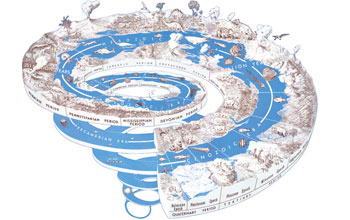 Time spiral: looking back through time to understand future climate change.