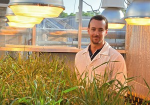 The University of Queensland's Dr Lee Hickey and research team have discovered a gene that provides resistance to leaf rust in some barley variety adult plants.