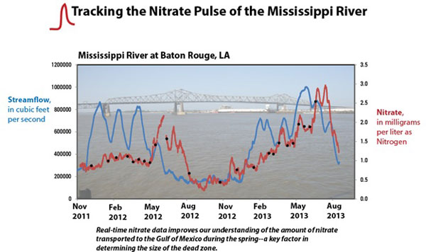 This graph shows the pulsing of the nitrate concentration of the Misssissippi River at Baton Rouge, LA, along with the streamflow at the same point, from November 2011 to August 2013.