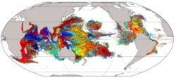 14 million modeled coral larval over a 1-year period. Note the empty no-mans-land that larvae have difficulty breaching – this is the East Pacific Dispersal Barrier. Credit: Sally Wood