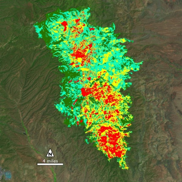 The soil burn severity map of the New Mexico Silver Fire shows areas that with high (red), medium (yellow) and low (green) severity burns. Image Credit: USGS/NASA