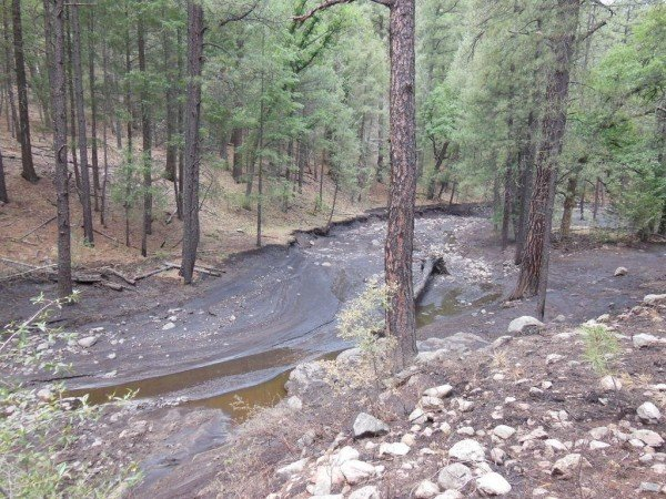 The 2013 Silver Fire near Kingston, N.M., caused ash to wash into streams and creeks. Crews responded quickly to help reduce erosion and runoff, guided in part by maps created from Landsat and other satellite imagery. Image Credit: U.S. Forest Service/E. Toney
