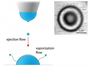 A specifically designed inkjet print-head (left) allows stabilization of micrometer-sized droplets (right, from above). (Picture: Galliker et al, PNAS 2013)