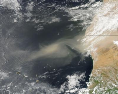 Caption: A NASA MODIS satellite image on Sept. 14, 2013, shows a cloud of dust carried by strong winds from sources in the Western Sahara. The Trade Winds transport the dust westward to the United States, the Caribbean and South America. Credit: NASA