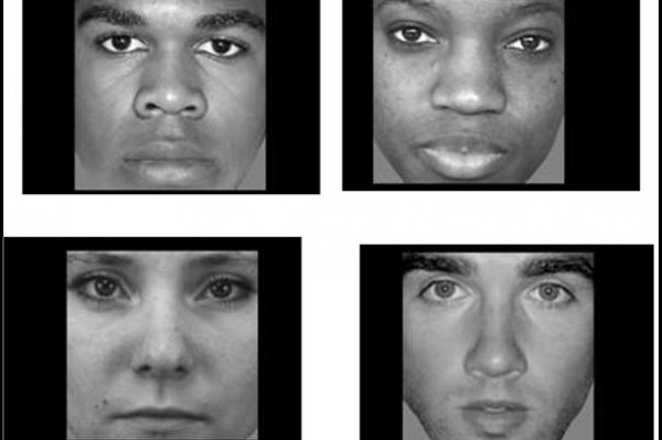 Harvard researchers have found a brain region in which patterns of neural activity change when people look at black and white faces, and at male and female faces. Image courtesy of Juan Manuel Contreras.