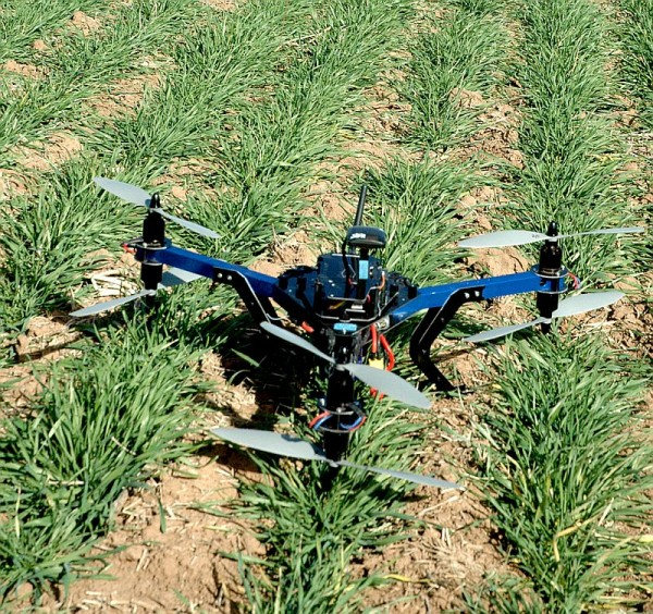 A helicopter drone is being used by Dr. Charlie Rush, Texas A&M AgriLife plant pathologist in Amarillo, to track disease progression across wheat fields. (Texas A&M AgriLife Research photo by Kay Ledbetter)