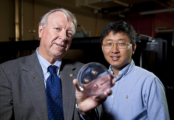 Rice University scientists Ned Thomas (left), dean of the George R. Brown School of Engineering, and Jae-Hwang Lee are the primary authors of a new review of photonic, phononic and phoXonics research in the journal Advanced Materials. (Credit: Tommy LaVergne/Rice University)