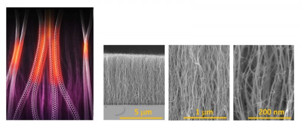 © Shigeo Maruyama, (Left) Image of vertically aligned SWNTs. Weak Van Der Waals attraction between adjacent SWNTs is responsible for zipping together. (Right) Structure of vertically aligned single-walled carbon nanotubes