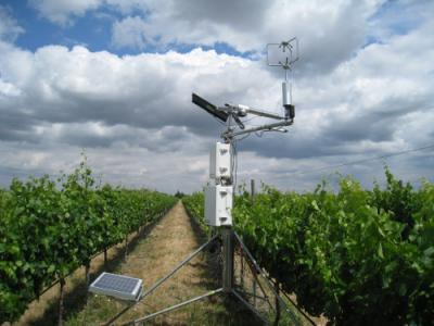 This is a solar powered field station established in a vineyard in California to measure surface renewal. Credit: JoVE, the Journal of Visualized Experiments