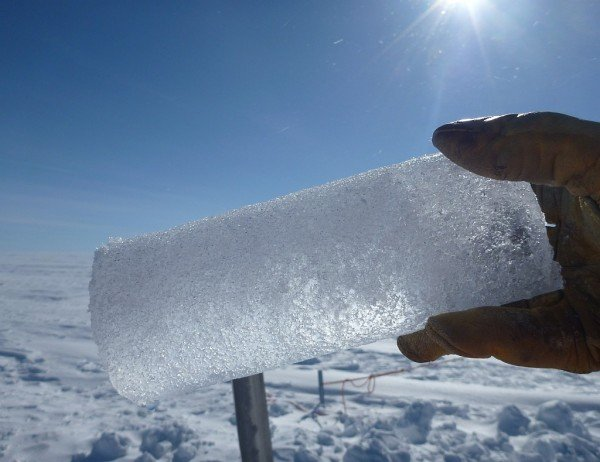 An ice core segment extracted from the aquifer by Koenig's team, with trapped water collecting at the lower left of the core. Image Credit: NASA's Goddard Space Flight Center/Ludovic Brucker