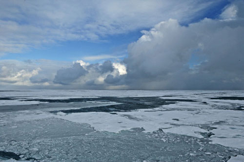 """Despite the rapid retreat of Arctic sea ice in recent years, the ice may temporarily stabilize or somewhat expand at times over the next few decades, recent research indicates. A computer modeling study conducted by scientists at the National Center for Atmospheric Research (NCAR) reinforces previous findings by other researchers that the level of Arctic sea ice loss observed in recent decades cannot be explained by natural causes alone, and that the ice will eventually melt away during summer if the climate continues to warm. In an unexpected result, the NCAR research team found that Arctic ice under current climate conditions is as likely to expand as it is to contract for periods of up to about a decade. """"One of the results that surprised us all was the number of computer simulations that indicated a temporary halt to the loss of the ice,"""" says NCAR scientist Jennifer Kay. """"The computer simulations suggest that we could see a 10-year period of stable ice or even a slight increase in the extent of the ice. Read more in this news release. Credit: NOAA"""