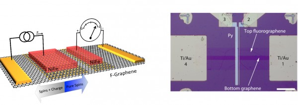 A schematic (left) and an optical image (right) of one of the homoepitaxial fluorinated graphene/graphene spin valve devices. The top layer of graphene is used as a tunnel barrier. It is fluorinated to decouple it from the bottom layer of graphene, which is the spin transport channel. Ferromagnetic permalloy (NiFe - red) contacts inject and detect the spin in the channel. The gold contacts are ohmic reference contacts (Ti/Au). The scale bar on the microscope image is 20 microns.  (Photo: U.S. Naval Research Laboratory)