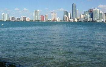 The skyline of downtown Miami along Biscayne Bay: What will it look like in 20, 50, 100 years? Credit: Virginia Fourqurean