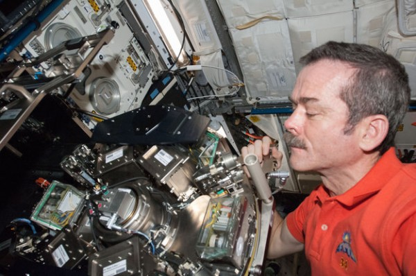Canadian Space Agency astronaut Chris Hadfield maintaining Biolab in Europe's Columbus laboratory on the International Space Station. Biolab is an experiment workstation tailored for research on biological samples such as micro-organisms, cells, tissue cultures, plants and small invertebrates. The unit features a centrifuge that creates simulated gravity to compare how samples react to weightlessness and artificial gravity. Copyright NASA