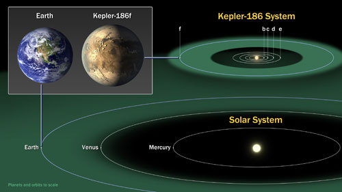 Figure 2. Kepler-186 and the Solar System: The diagram compares the planets of the inner solar system to Kepler-186, a five-planet system about 500 light-years from Earth in the constellation Cygnus. The five planets of Kepler-186 orbit a star classified as a M1 dwarf, measuring half the size and mass of the sun. The Kepler-186 system is home to Kepler-186f, the first validated Earth-size planet orbiting a distant star in the habitable zone—a range of distances from a star where liquid water might pool on the surface of an orbiting planet. The discovery of Kepler-186f confirms that Earth-size planets exist in the habitable zone of other stars and signals a significant step closer to finding a world similar to Earth. Kepler-186f is less than ten percent larger than Earth in size, but its mass and composition are not known. Kepler-186f orbits its star once every 130-days and receives one-third the heat energy that Earth does from the sun, placing it near the outer edge of the habitable zone. The inner four companion planets all measure less than fifty percent the size of Earth. Kepler-186b, Kepler-186c, Kepler-186d, and Kepler-186e, orbit every three, seven, 13, and 22 days, respectively, making them very hot and inhospitable for life as we know it. The Kepler space telescope, which simultaneously and continuously measured the brightness of more than 150,000 stars, is NASA's first mission capable of detecting Earth-size planets around stars like our sun. Kepler does not directly image the planets it detects. The space telescope infers their existence by the amount of starlight blocked when the orbiting planet passes in front of a distant star from the vantage point of the observer. The artistic concept of Kepler-186f is the result of scientists and artists collaborating to help imagine the appearance of these distant worlds. Credit: NASA Ames/SETI Institute/JPL-CalTech.